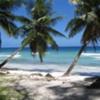 http://www.stmivani-ff.cz/gallery/100px-101,702,0,600-Island_Paradise.jpg