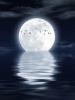 http://www.stmivani-ff.cz/gallery/moonlight_on_sea_by_olbor62-d3kex3h.jpg